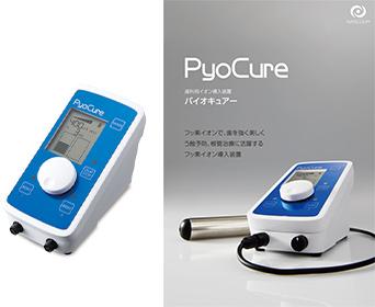 フッ素イオン導入法装置
