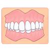 上下の前歯にすき間ができ咬み合わない(開咬)